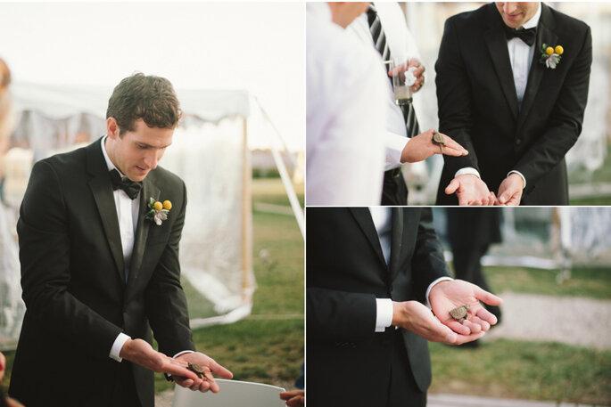 Il salvataggio della piccola tartaruga da parte dello sposo. Foto: Alexandra Roberts