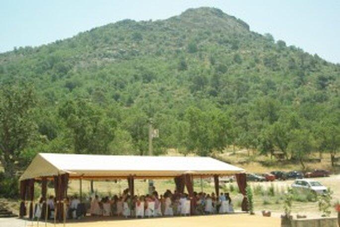 Una gran boda vegetariana en plena naturaleza