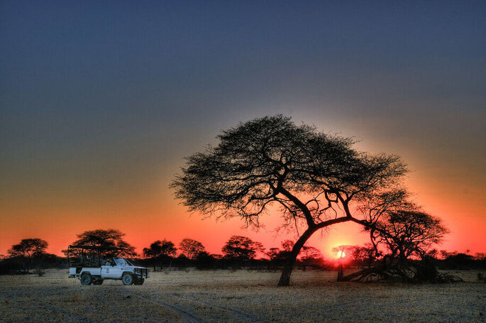 Botswana Holidays - Lune de miel