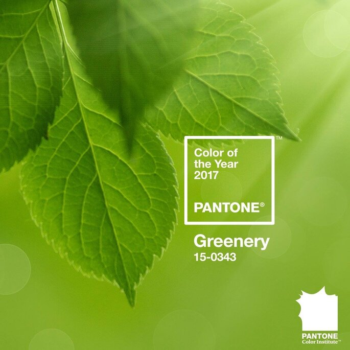 Foto: Pantone