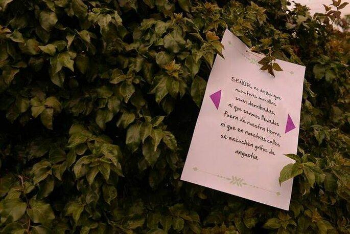 Mesajes suspendidos en los árboles: una idea sencilla y encantadora. Foto: Juya Photographer