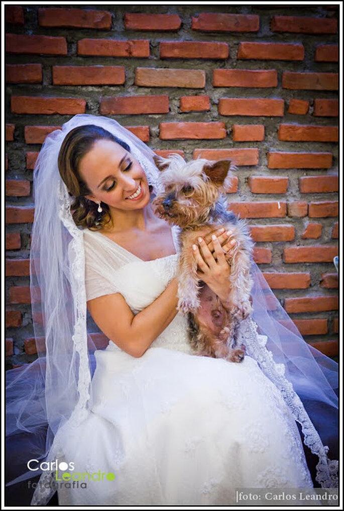 Tu perro el día de tu boda. Foto: Carlos Leandro