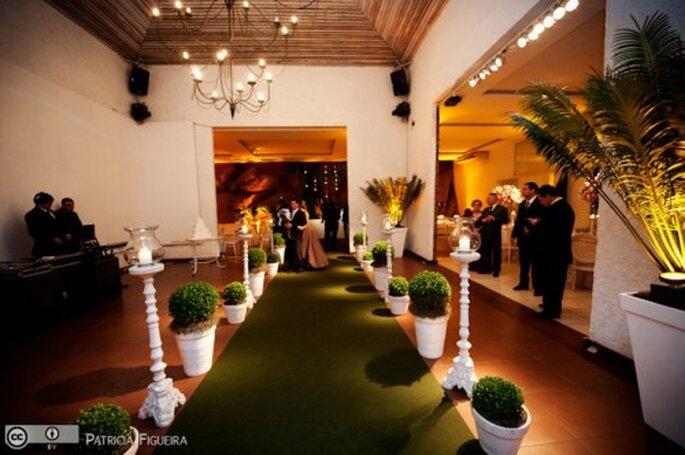 plantas en macetas y alfombra verde