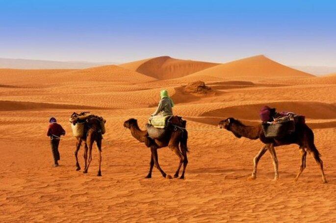 miesiąc miodowy w Egipcie