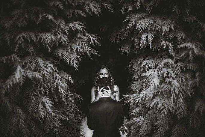 André Tavares Fotografia