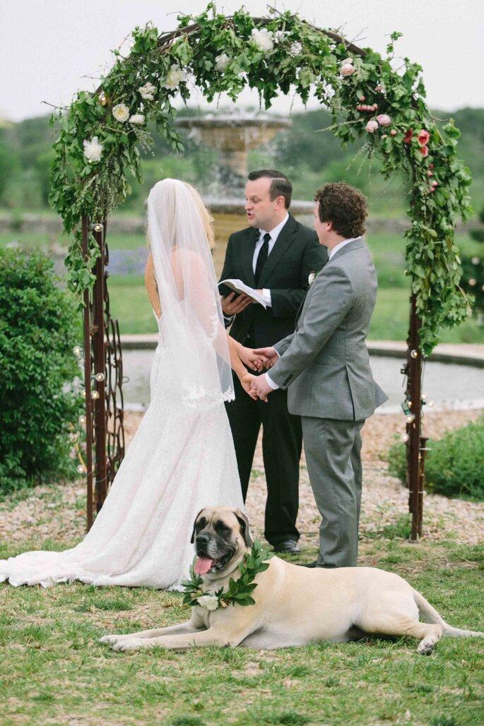 Tu mascota en tu boda - Heather Hawkins Photography