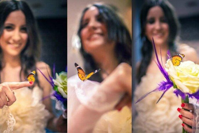 Foto: Mariposas en tu boda