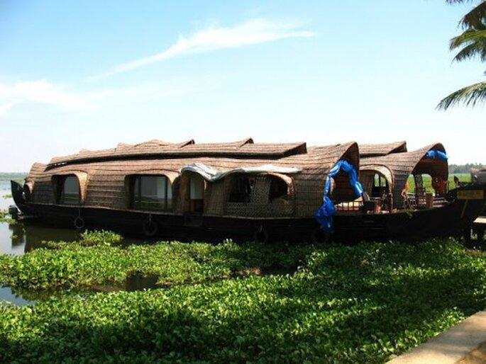 Die Backwaters sind auf jeden Fall eine Reise wert. Foto: Enchanting Travers