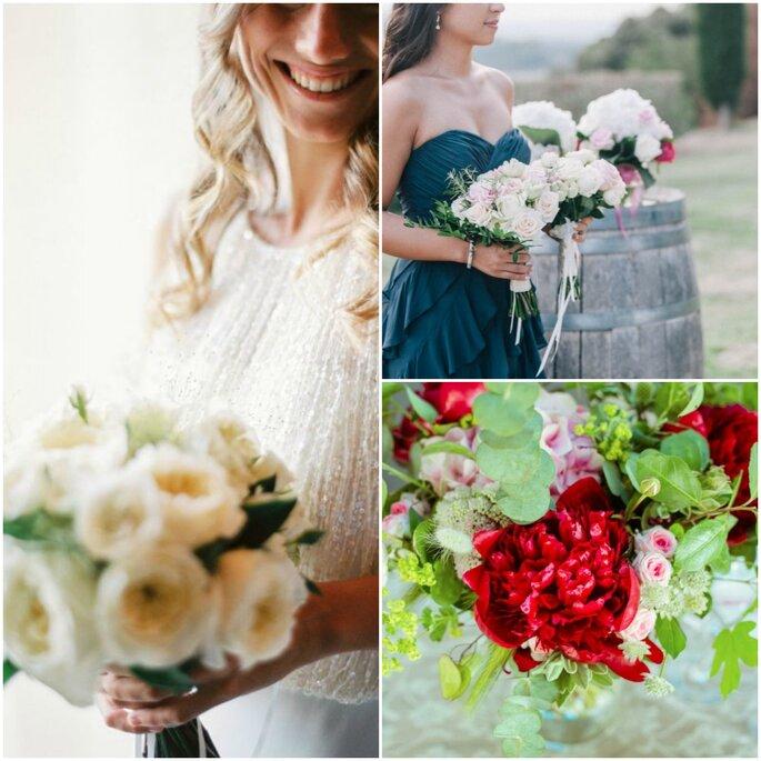 Les Fées Nature  - Benjamin Barlatier photographe roses blanches - Sebanado photographie pivoine rouge