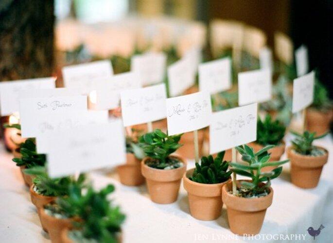 Boda temática, plantas para invitados. fotografía de JenLynne