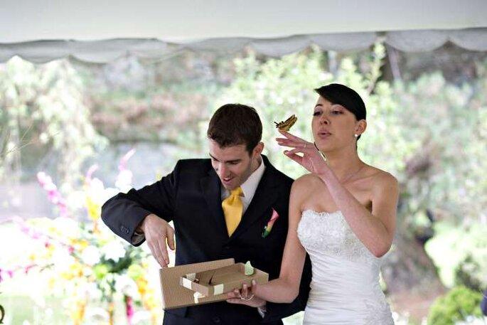 Un bello efecto para una boda campestre. Foto: Mariposas son Colombia