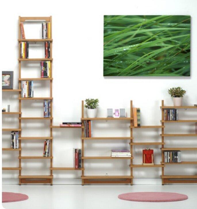 Saputella 600, esclusivo sistema modulare a libreria per riporre libri, cd e dvd.