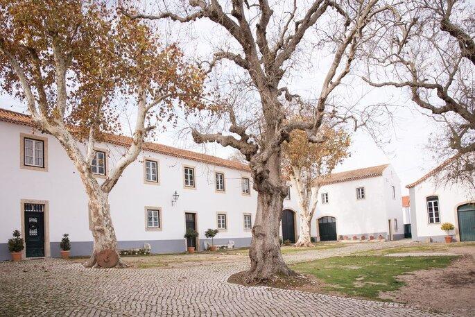 Duas Quintas - Torres Vedras