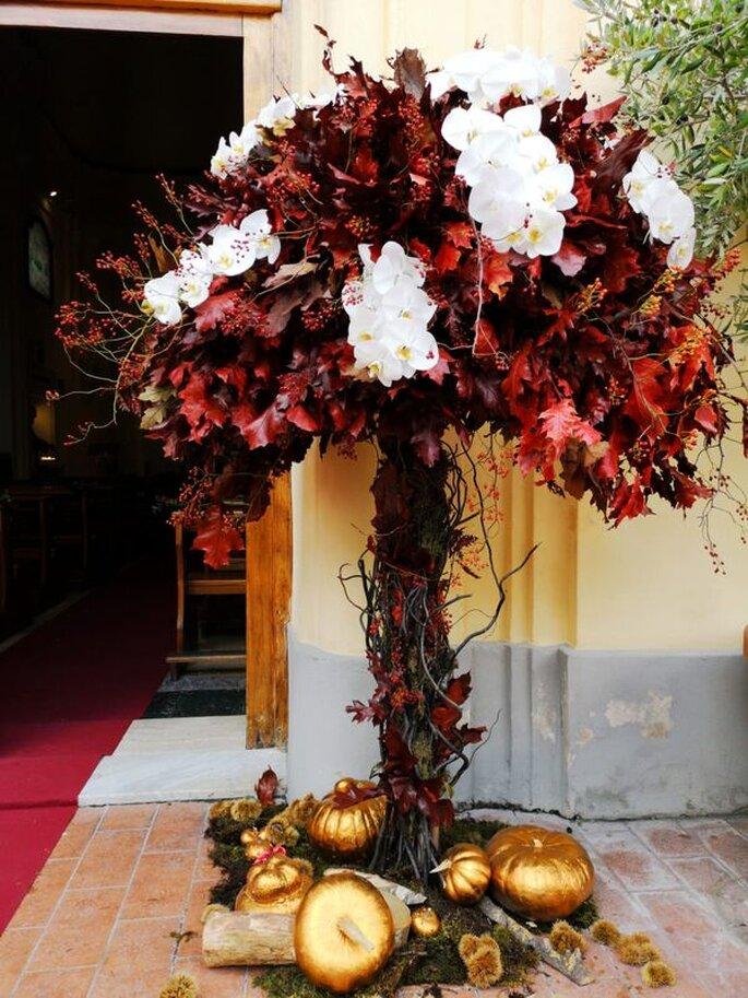 Iris Flowers Designer