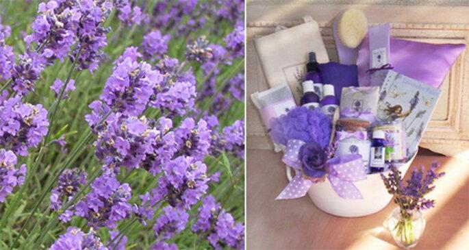 Lembranças para os convidados Fotos: Lavender Fanatics