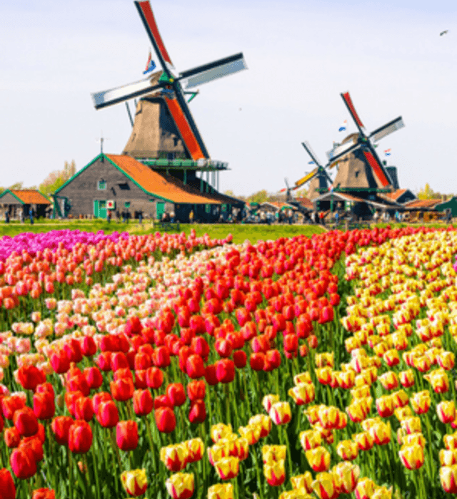 Het beste voor uw bruiloft in Gelderland