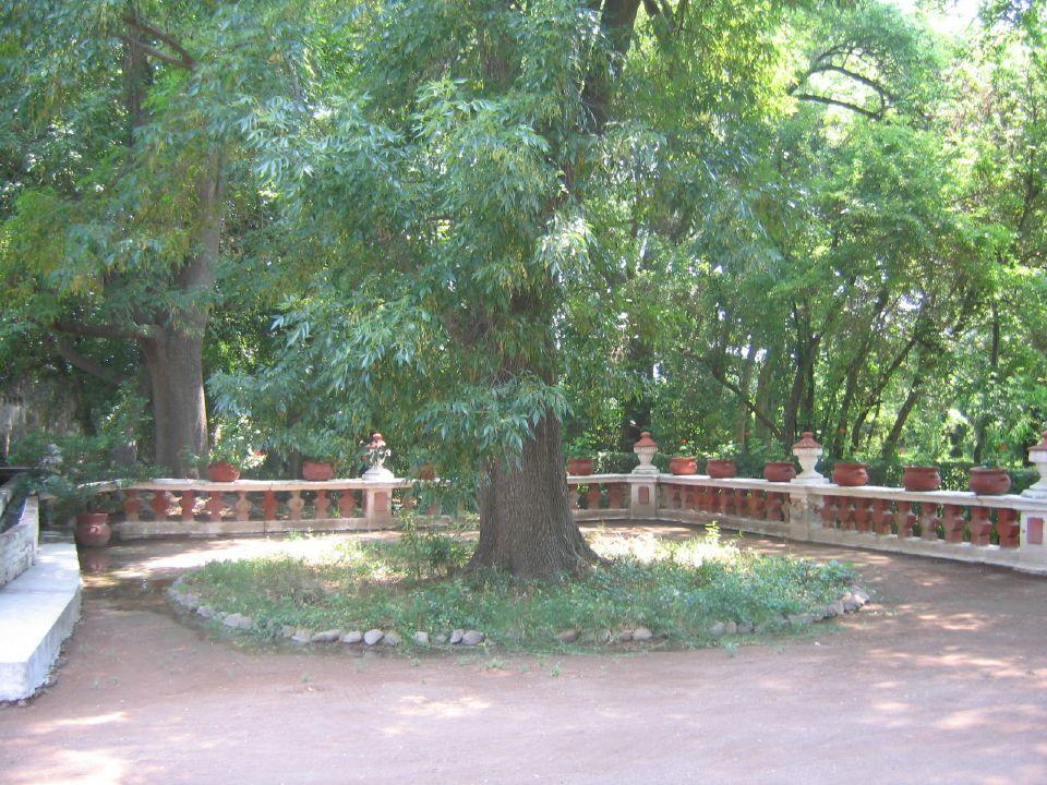 Hacienda Grande (Huerta)