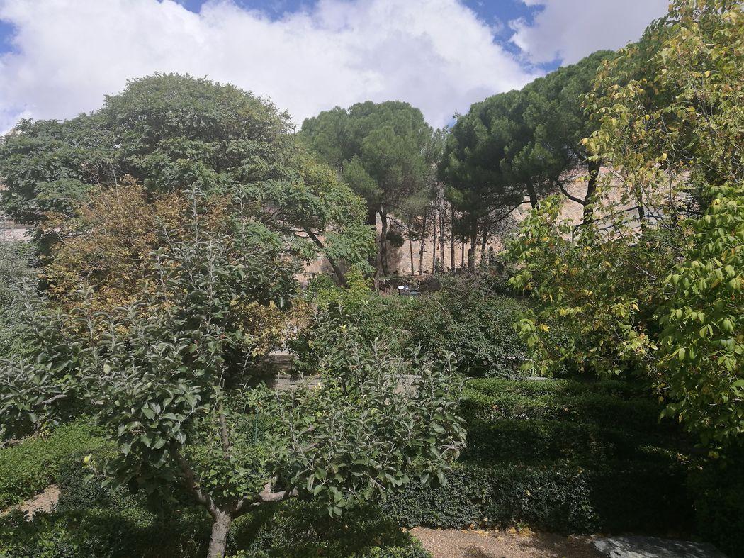 Finca Güell Ávila