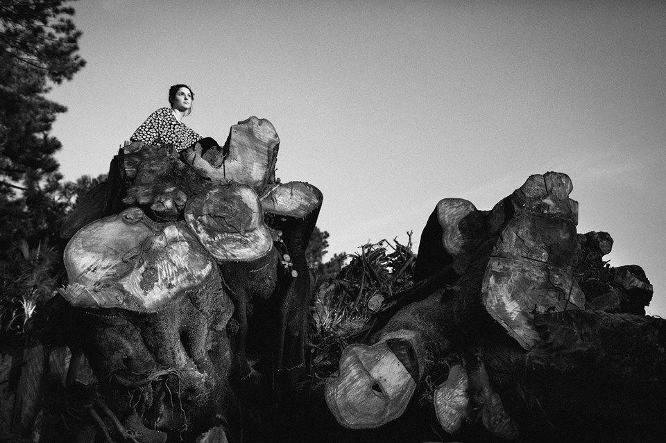 Rafael Almeida Fotografia
