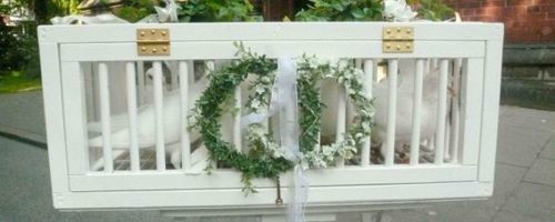 Beispiel: Hochzeitstauben - Korb, Foto: Hochzeitstauben-HH.