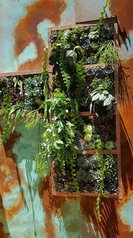 DecorAcción 2016. Jardín vertical con crasas