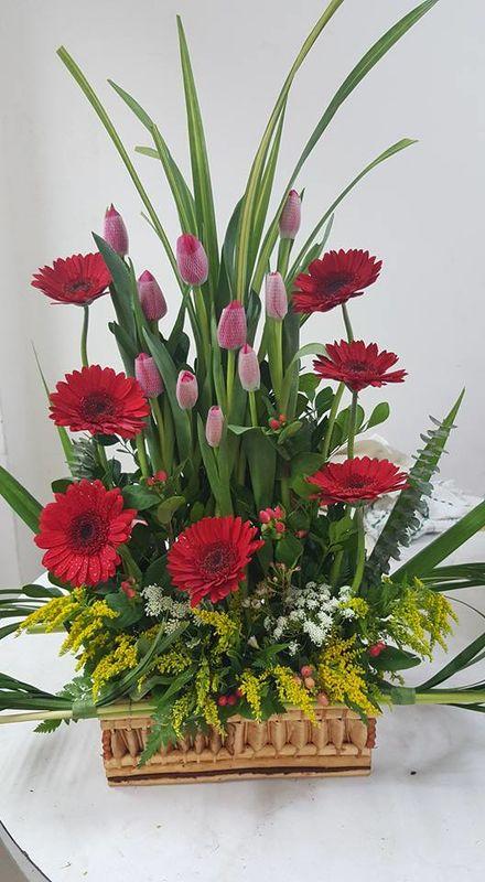 Maju Gardens Florería