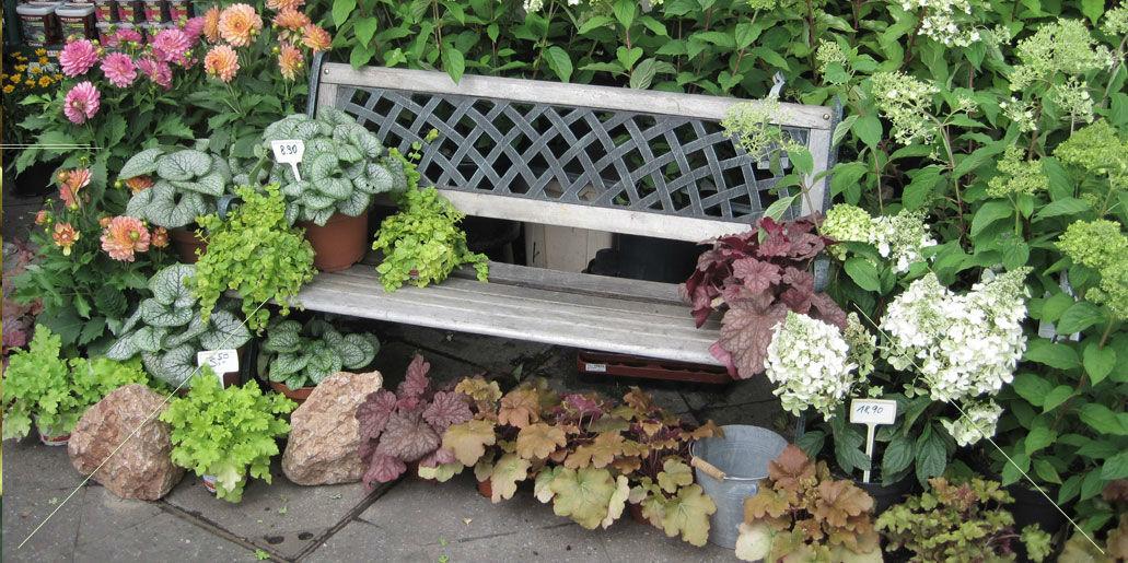 Beispiel: Blumendekoration der Außenbereiche, Foto: Blumen Hetzer.