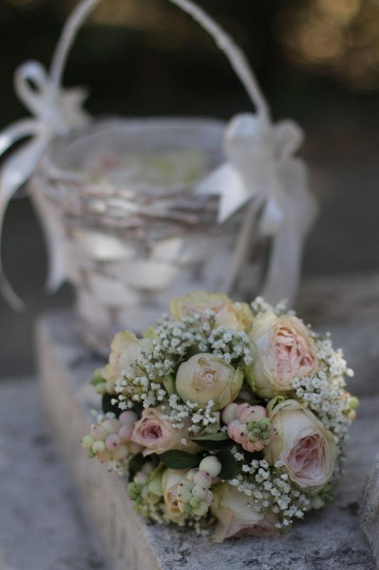 Carla Home & Flowers