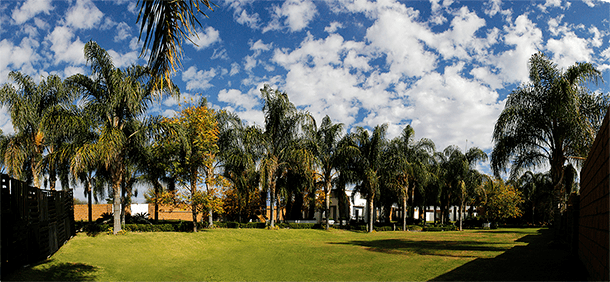 Quinta Palma Real