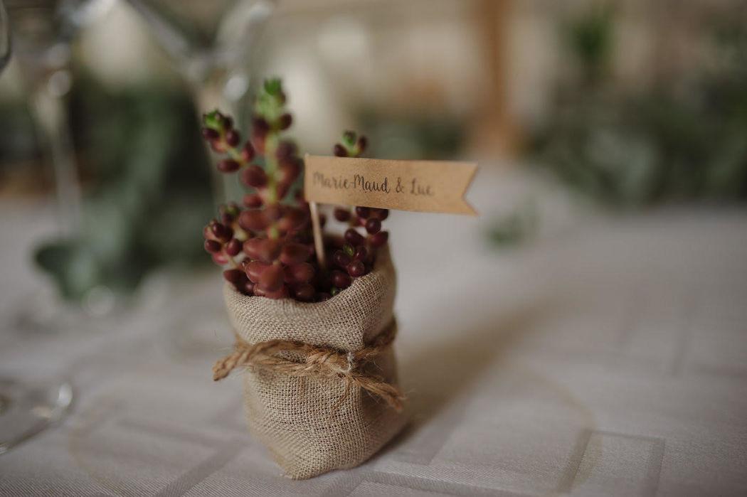 Cadeau d'invité mini plante