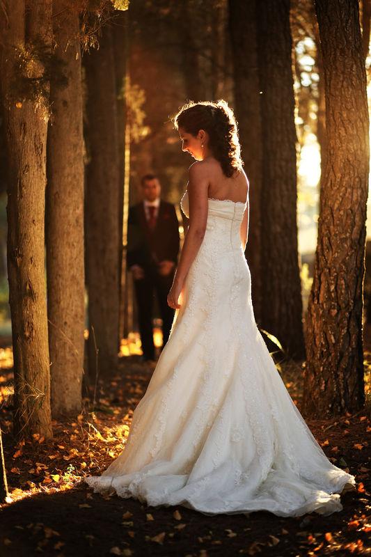 Frank Palace, fotógrafo de boda