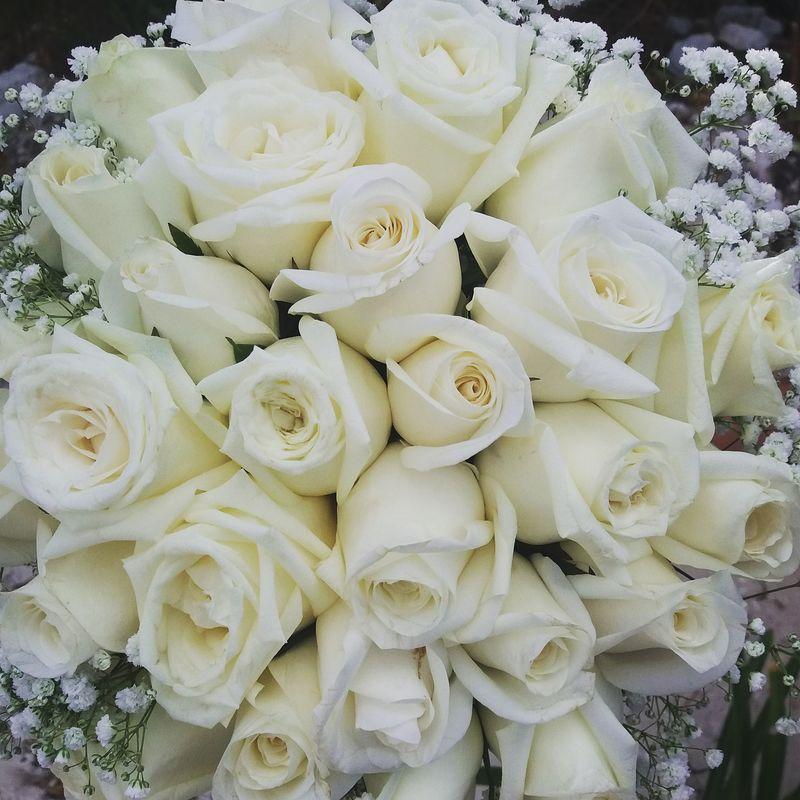 Ramo de rosas con gypsofilia