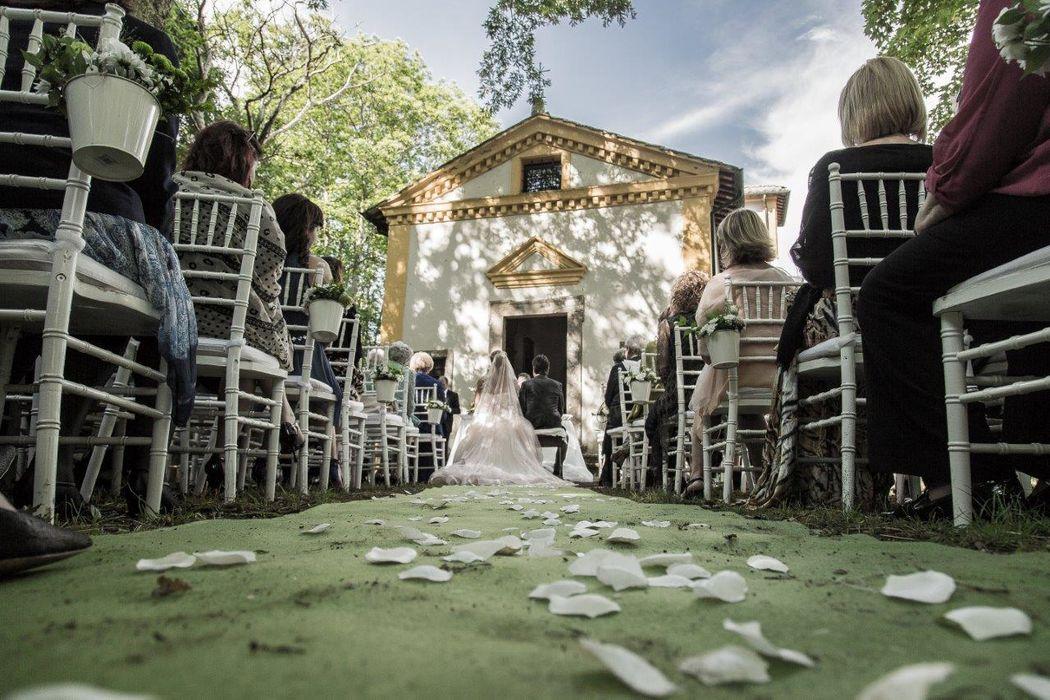 Daniela Luchetti - wedding & event design