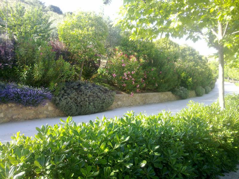 Espacios exteriores y jardines