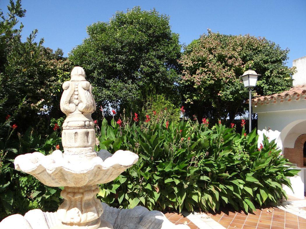 Detalle fuente patio