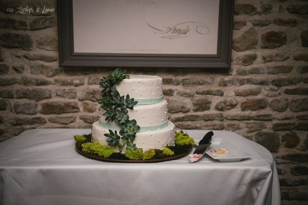 Adam & Danny's wedding cake, french style