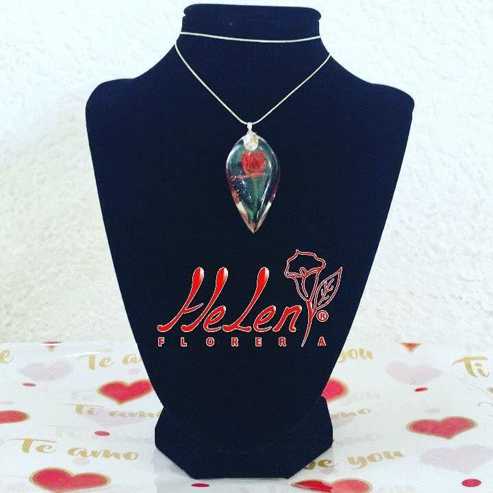 Florería Helen