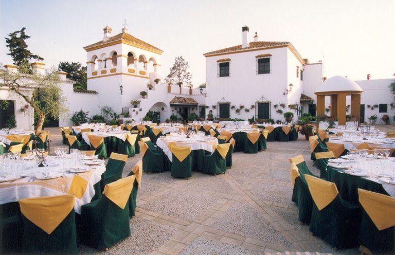 Patio Hacienda La Mojarra
