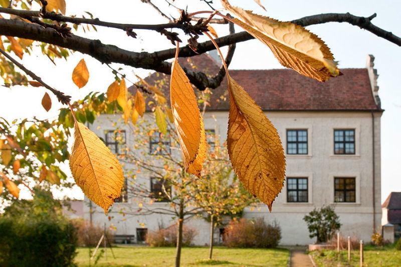 Beispiel: Impression im Schlossgarten, Foto: Schloss Schmarsow.