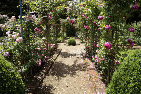 L'Orangerie de Vatimesnil