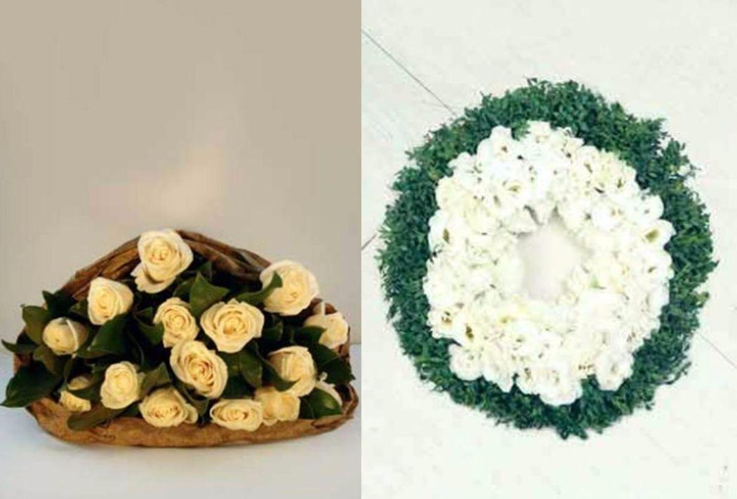 Flores Paula Rivas
