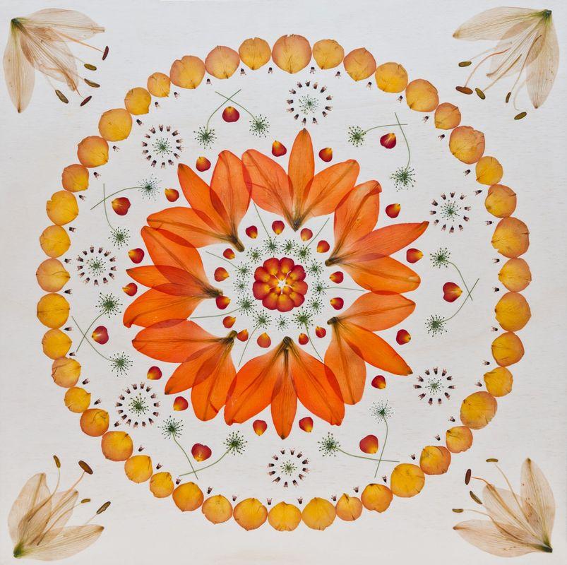 Flora Metaphorica