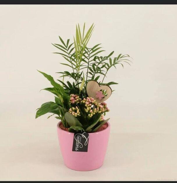 Floristeria Raquel - Arte Floral