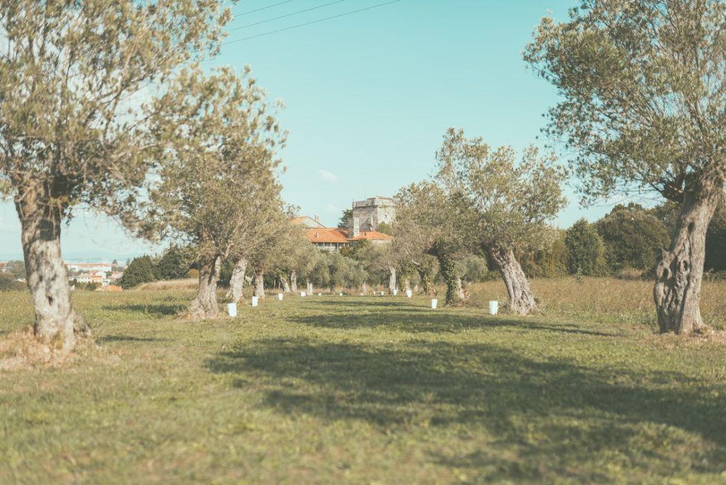 Pazo Torre de Xunqueiras