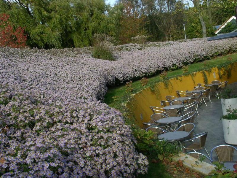 Tuin Huys ter Schelde