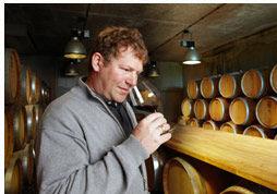 Beispiel: Weinkeller, Foto: Weingut am Stein.