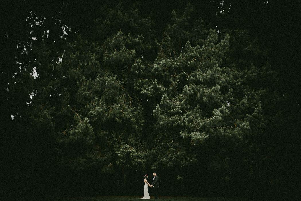Rafael Melo Photography