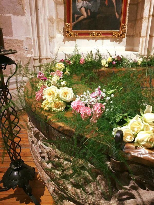 Flores y Plantas Valleruela