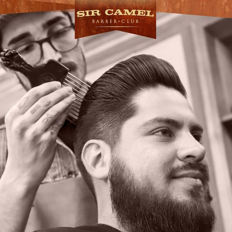 Sir Camel