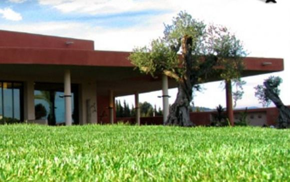 Finca Palo Verde